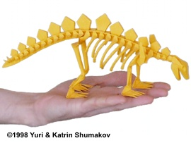 Skeleton of Stegosaurus by Yuri and Katrin Shumakov